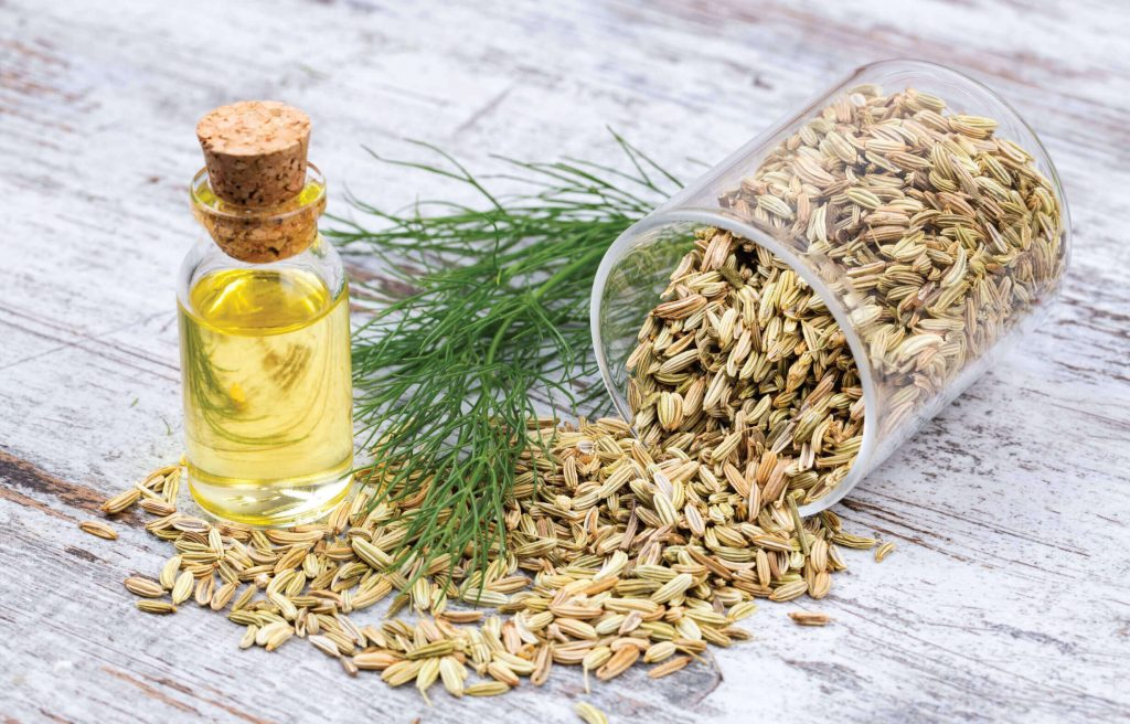 Fennel seeds are used as both a mouth freshner and a seasoning.