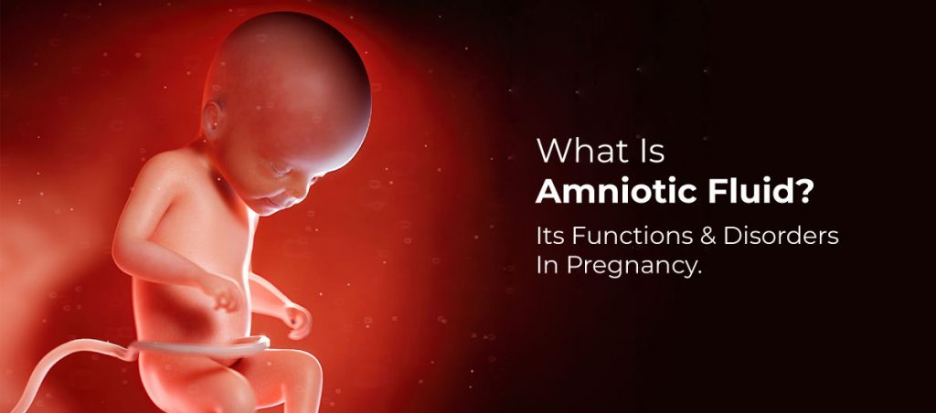 Amniotic fluid It's Functions & Disorders